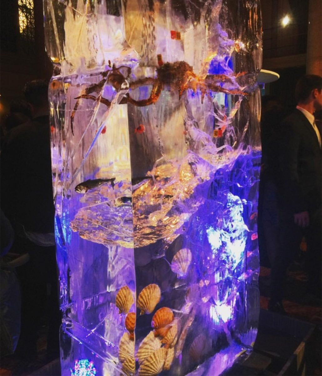 seafood custom display ice