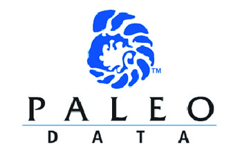 paleodata logo design corporate ID development graphic design